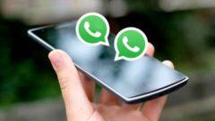 dois whatsapp